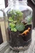 dino terrarium