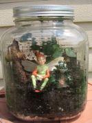 fairy 2 terrarium