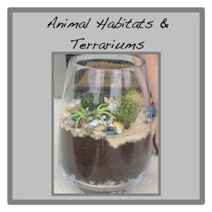 terrarium button