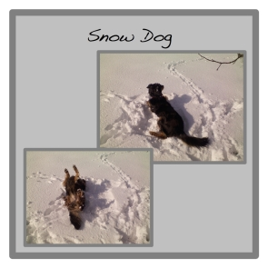 snow dog button